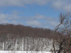 Spring snow hill