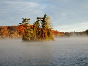 rEarly Fall Morning